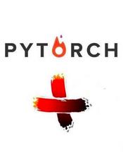 PyTorch中文文档