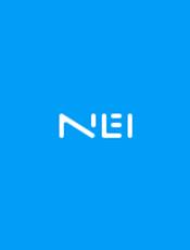 NEI 接口文档管理平台配套自动化工具文档