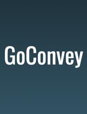 [英文] GoConvey Document