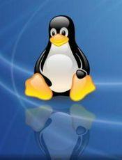 Linux 安装配置指南