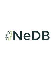 NeDB Document