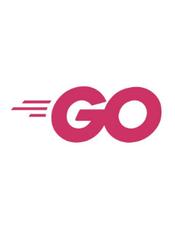 Go 语言设计与实现